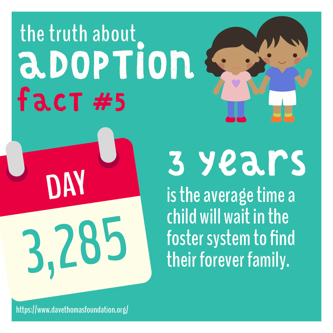 v2_adoption5
