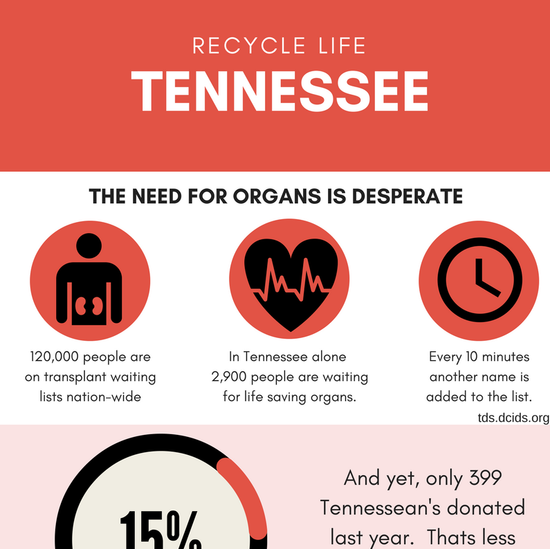 Recycle Life Infographic